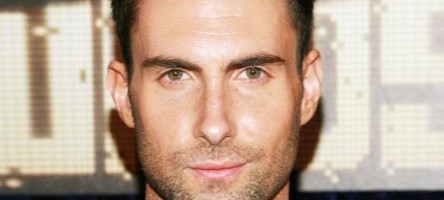 Adam Levine's Hollywood Hills Home
